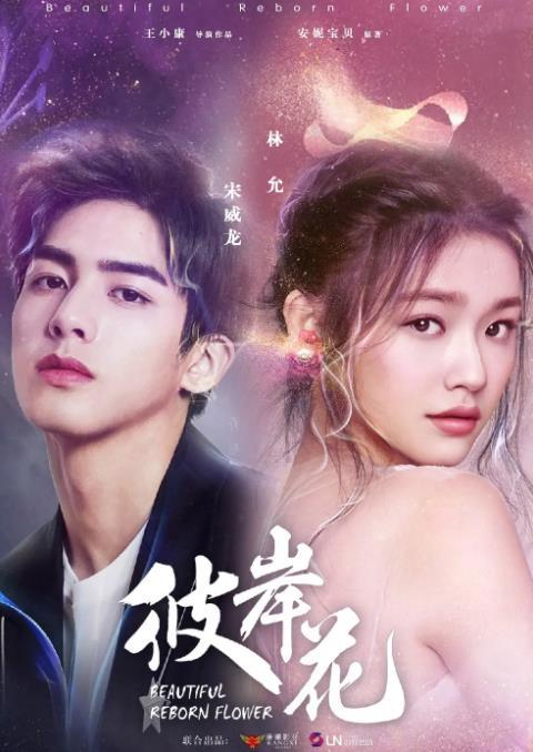 2020年大陆国产剧《彼岸花》连载至40迅雷下载